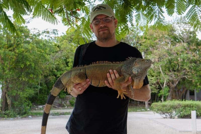 tulum-iguana-larga