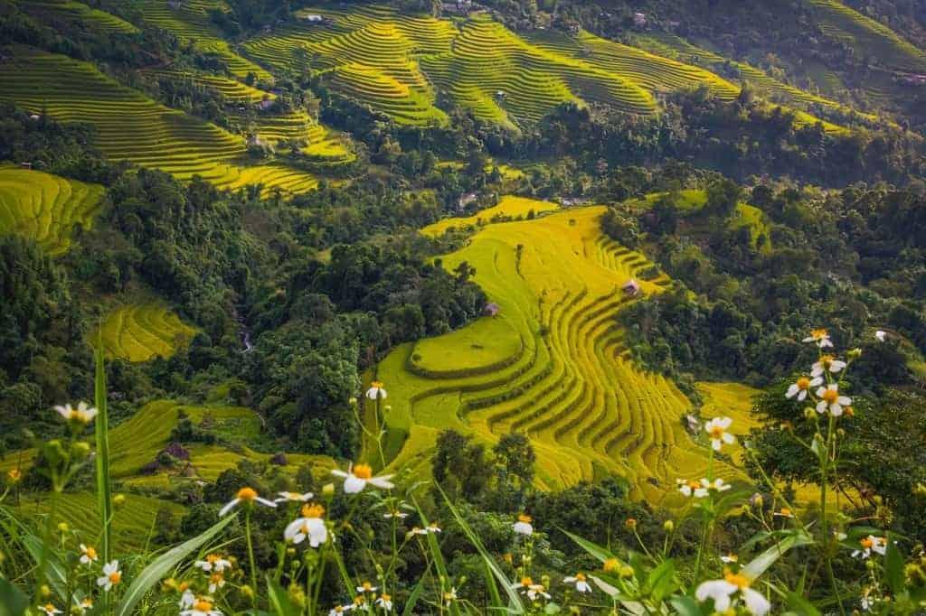 Visa Vietnam Colombianos