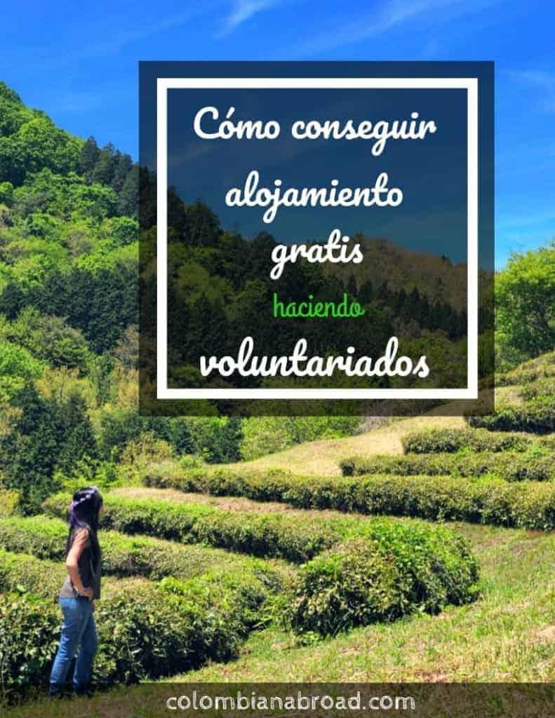 Consigue alojamiento gratis en tus viajes haciendo voluntariados